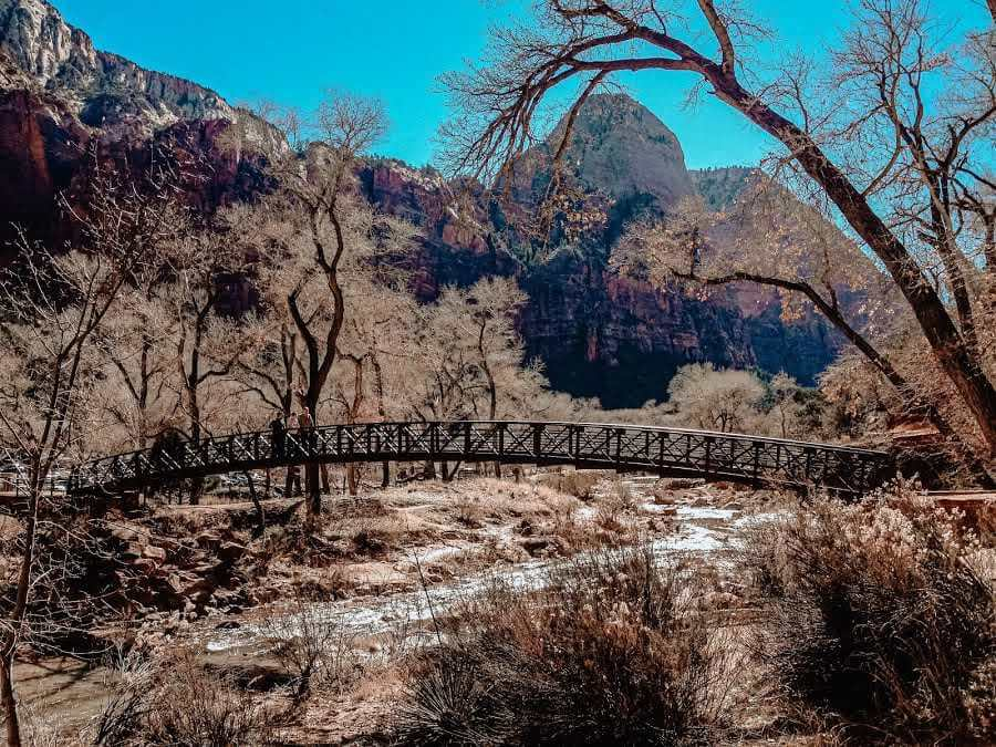 things to see in utah hiking in Zion National Park