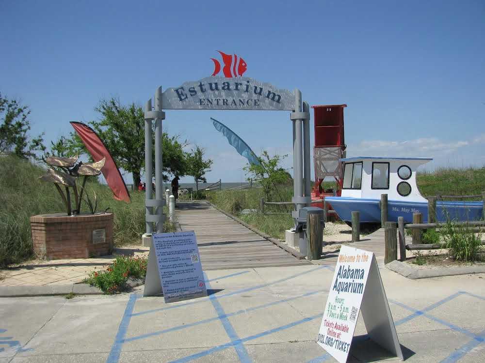dauphin-island-things-to-do-estuarium